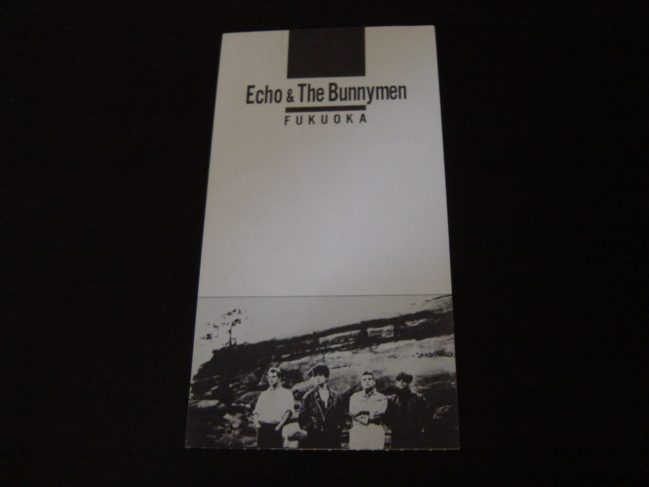 Bunnymen_ticket