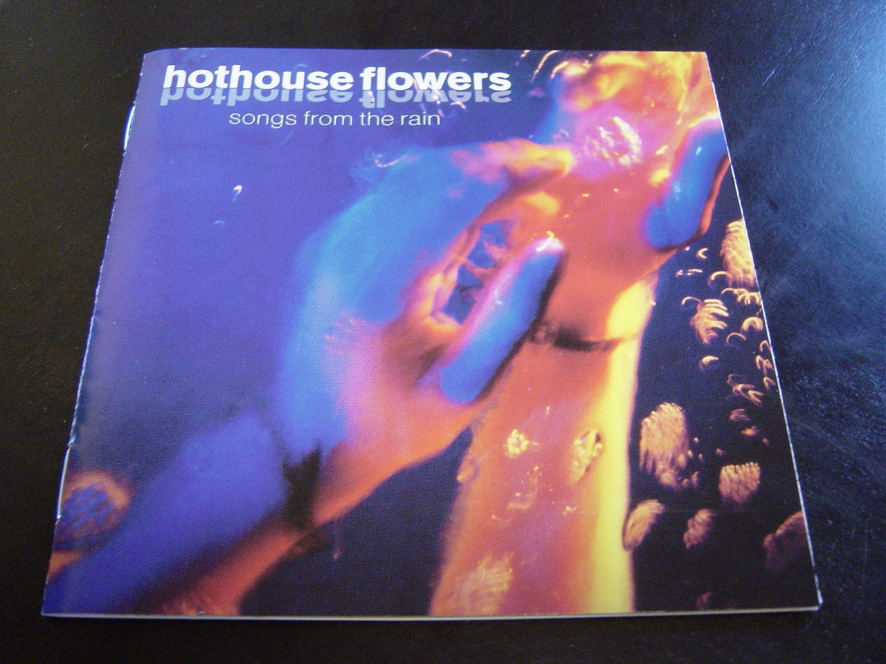Hothouse_flowers_1